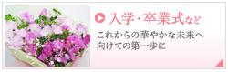 入学・卒業式 祝い 花ギフト